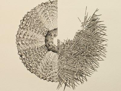 Eva Rodríguez Góngora, Forma átona de yo. 2017, encre sur papier, 58,5 x 32 cm